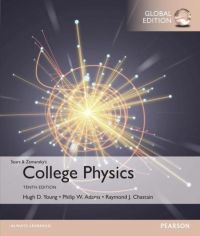 College Physics 9781292112541